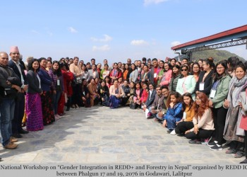 Workshop_Gender_Integration_in_Forestry(1).JPG